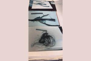 לאחר הרצח, נמצאה קווצת שערות מלאכותיות במכולת אשפה בשטח בית הספר.